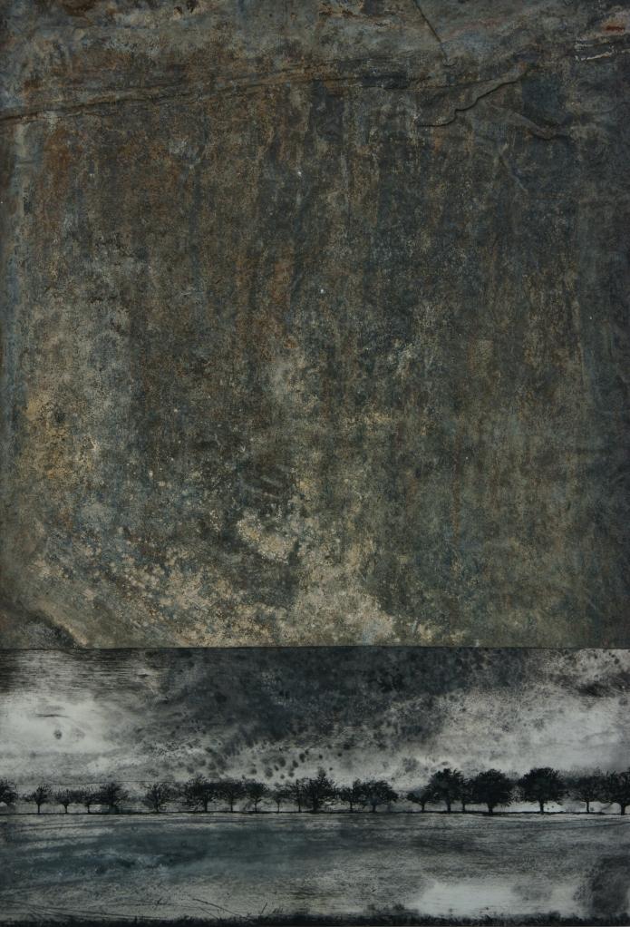 DSC09146 (Plaine grise - 87 X 60 - Francis Hungler)
